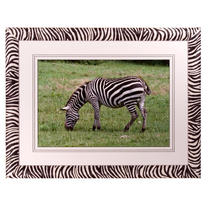 framed Zebra photograph by Kurt Neumann